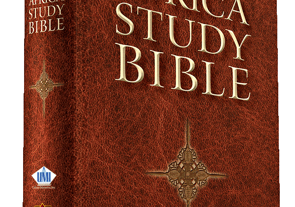 How it all began - Africa Study Bible